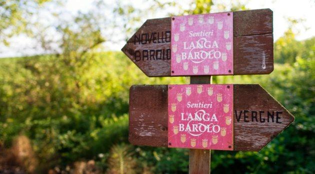 langa-barolo